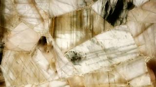 Bild von 8617 Aragonite Caesarstone